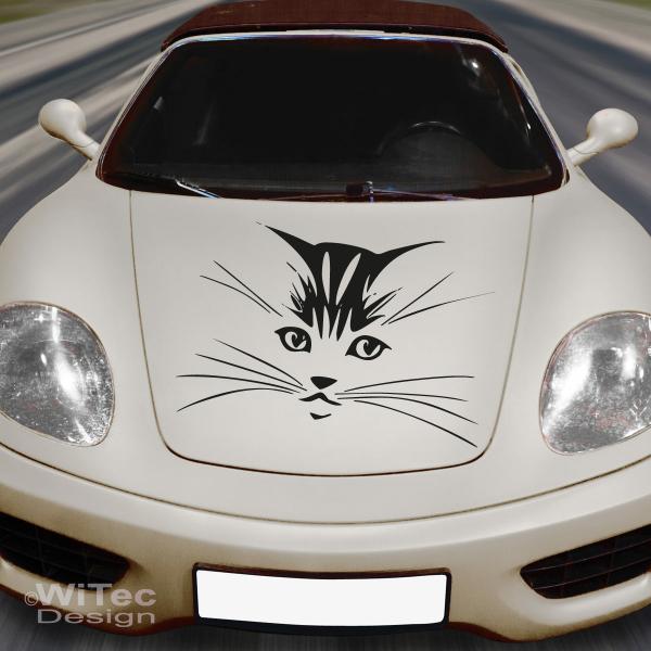 An099 Katze Aufkleber Auto Autoaufkleber Sticker